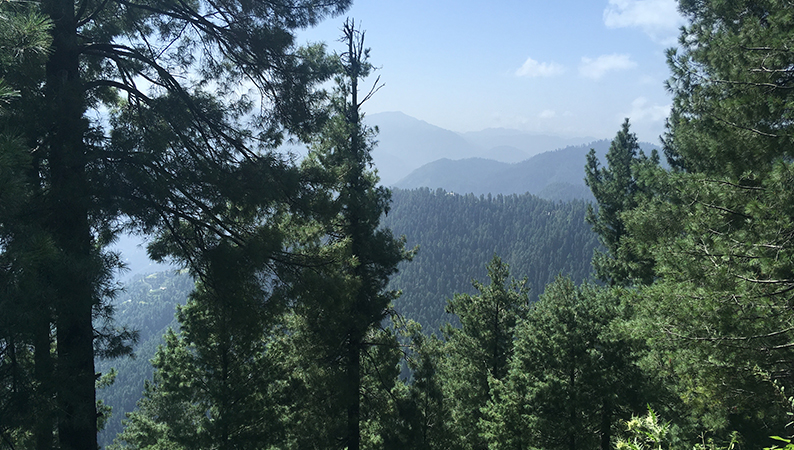 Pakistan_landscape