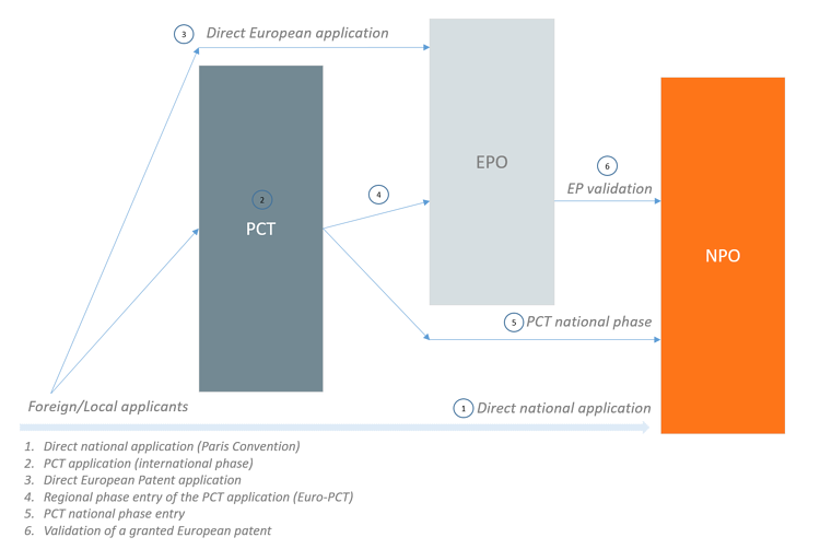 PCT, EP and National patent application phases - Graph